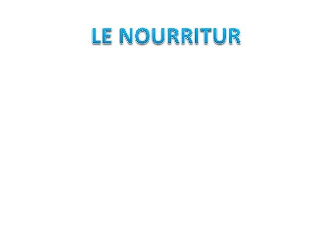 - Haricorts verts - Épinards - Chardons - Chou - Bettes  - Artichauts - Céleri - Asperges - Laitue