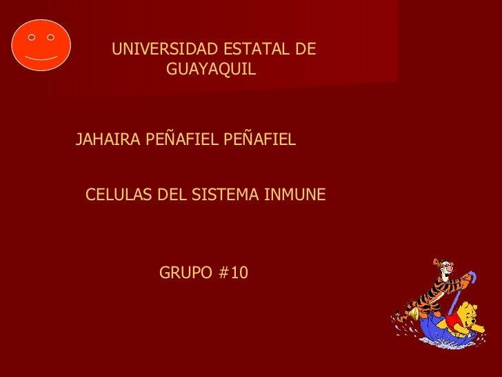 UNIVERSIDAD ESTATAL DE GUAYAQUIL  JAHAIRA PEÑAFIEL PEÑAFIEL CELULAS DEL SISTEMA INMUNE GRUPO #10
