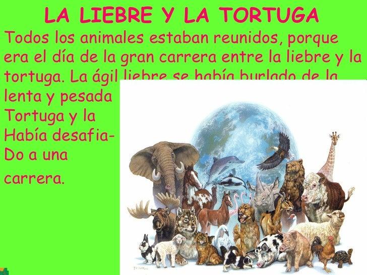 LA LIEBRE Y LA TORTUGA   Todos los animales estaban reunidos, porque era el día de la gran carrera entre la liebre y la to...