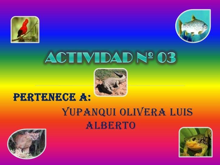 ACTIVIDAD Nº 03<br />PERTENECE A:      <br />YUPANQUI OLIVERA LUIS ALBERTO<br />