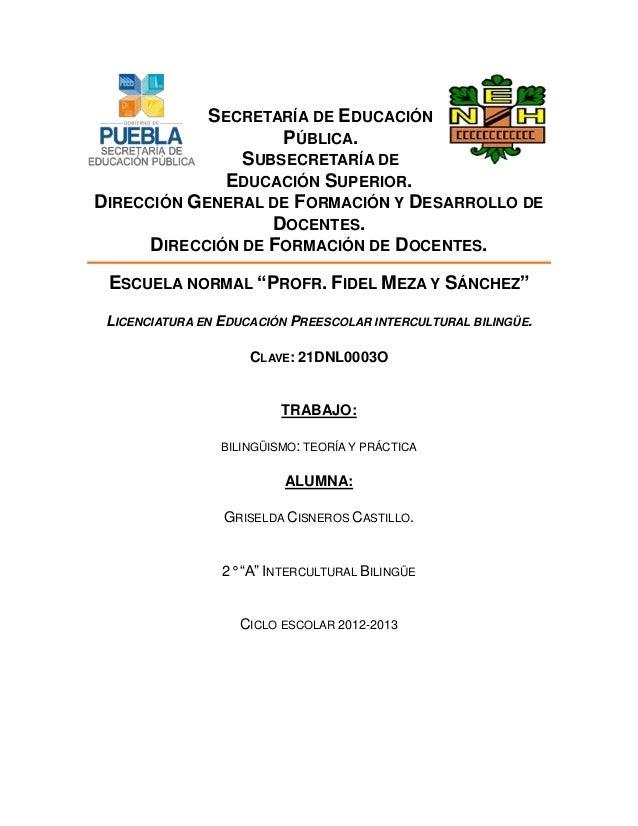 SECRETARÍA DE EDUCACIÓN PÚBLICA. SUBSECRETARÍA DE EDUCACIÓN SUPERIOR. DIRECCIÓN GENERAL DE FORMACIÓN Y DESARROLLO DE DOCEN...