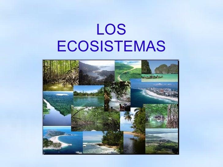 Trabajo de biología sobre Ecosistemas