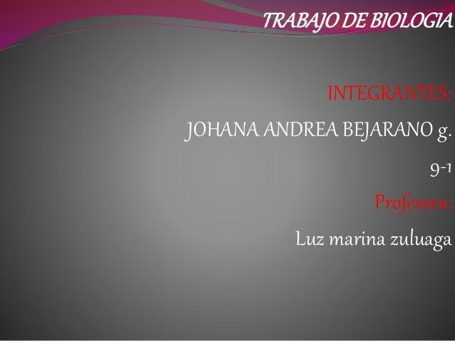 TRABAJODE BIOLOGIA INTEGRANTES: JOHANA ANDREA BEJARANO g. 9-1 Profesora: Luz marina zuluaga