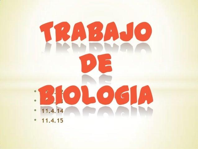 • • • •  Trabajo de Biologia 11.4.12 11.4.13 11.4.14  11.4.15