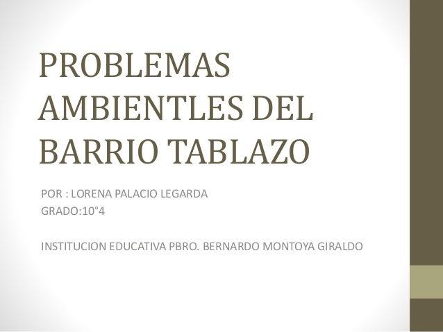 PROBLEMAS AMBIENTLES DEL BARRIO TABLAZO POR : LORENA PALACIO LEGARDA GRADO:10°4 INSTITUCION EDUCATIVA PBRO. BERNARDO MONTO...
