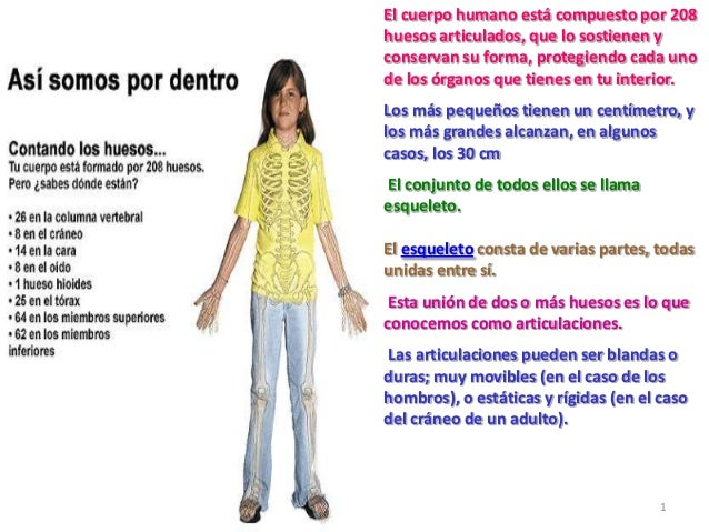 Otaku Test furthermore Watch together with Full together with Huesos Diapositivas furthermore 213691. on 213691