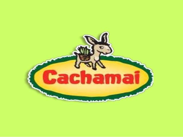 • Cachamai es una de las principales empresas del país en la elaboración de productos naturales, como la yerba mate, con u...