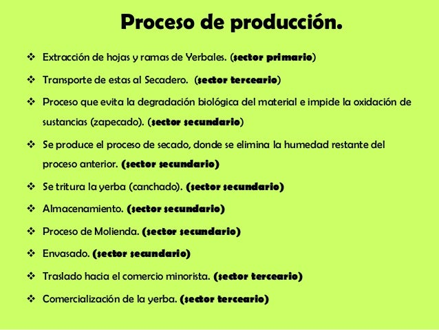 Circuito Productivo De La Yerba Mate : Trabajo de economia proceso produccion yerba mate