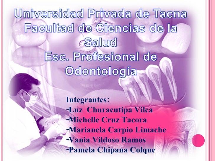 <ul><li>Integrantes:  </li></ul><ul><li>Luz  Churacutipa Vilca </li></ul><ul><li>Michelle Cruz Tacora </li></ul><ul><li>Ma...