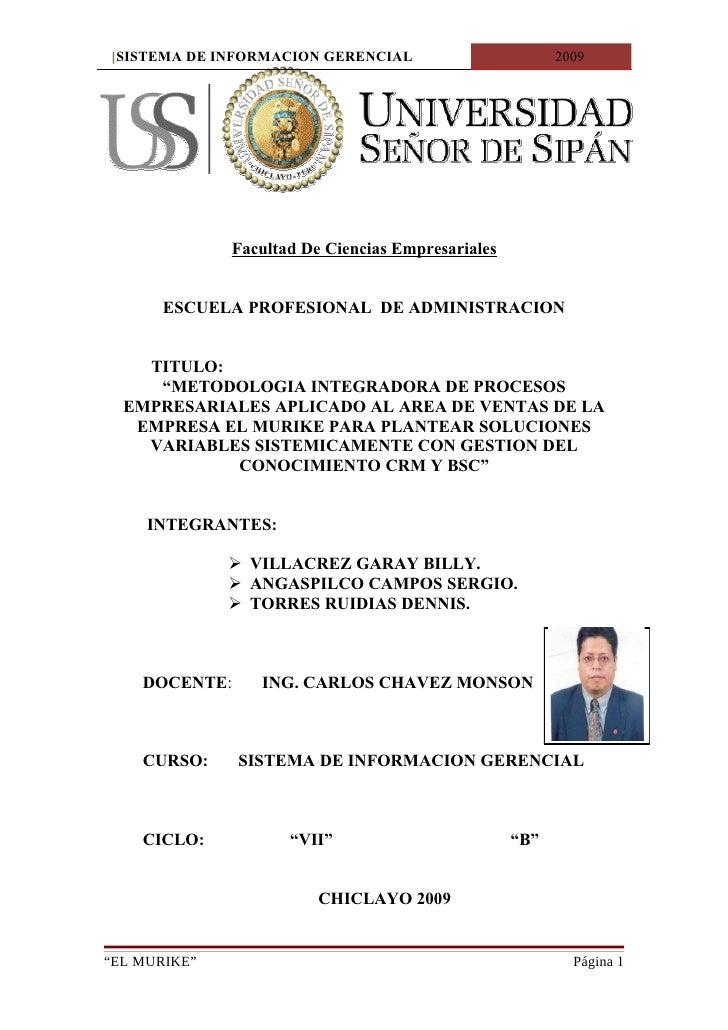 [SISTEMA DE INFORMACION GERENCIAL                        2009                   Facultad De Ciencias Empresariales        ...