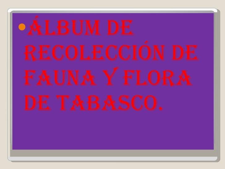 <ul><li>Álbum de recolección de fauna y flora de tabasco. </li></ul>