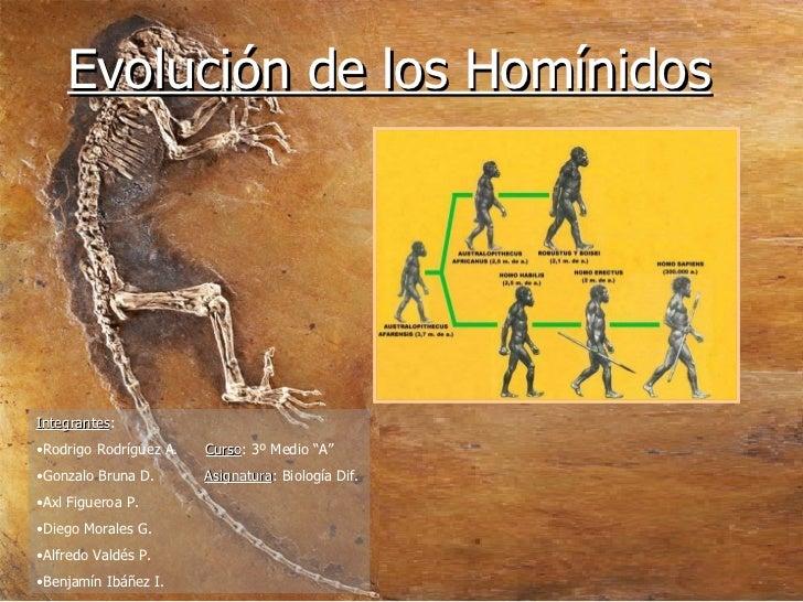 "Evolución de los Homínidos <ul><li>Integrantes : </li></ul><ul><li>Rodrigo Rodríguez A.  Curso : 3º Medio ""A""  </li></ul><..."