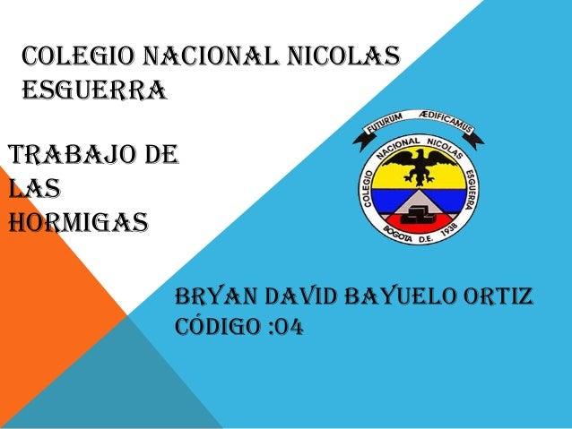 Colegio Nacional Nicolas Esguerra Trabajo de las hormigas Bryan David Bayuelo Ortiz Código :04