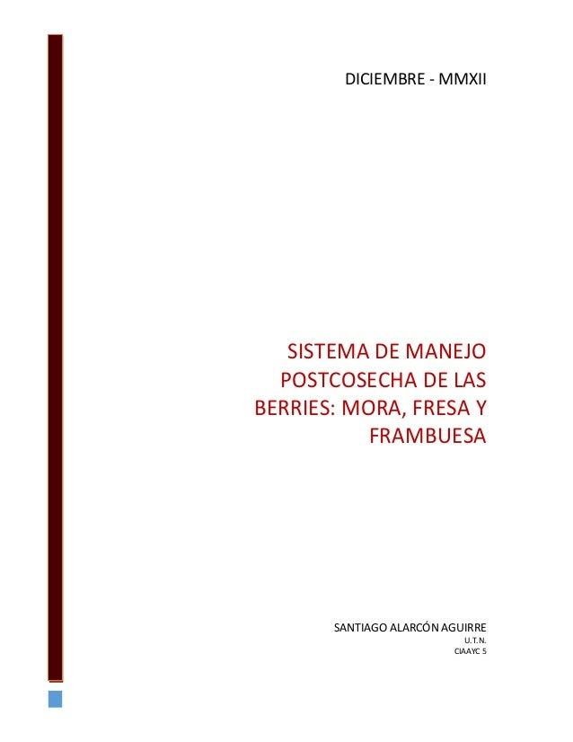SISTEMA DE MANEJO POSTCOSECHA DE LAS BERRIES: MORA, FRESA Y FRAMBUESA SANTIAGO ALARCÓN AGUIRRE U.T.N. CIAAYC 5 DICIEMBRE -...