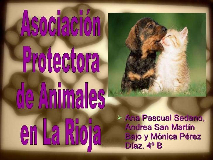 <ul><li>Ana Pascual Sedano, Andrea San Martín Bajo y Mónica Pérez Díaz. 4º B </li></ul>Asociación Protectora de Animales e...