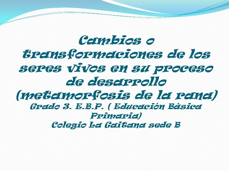 Cambios o transformaciones de los seres vivos en su proceso de desarrollo(metamorfosis de la rana)Grado 3. E.B.P. ( Educac...