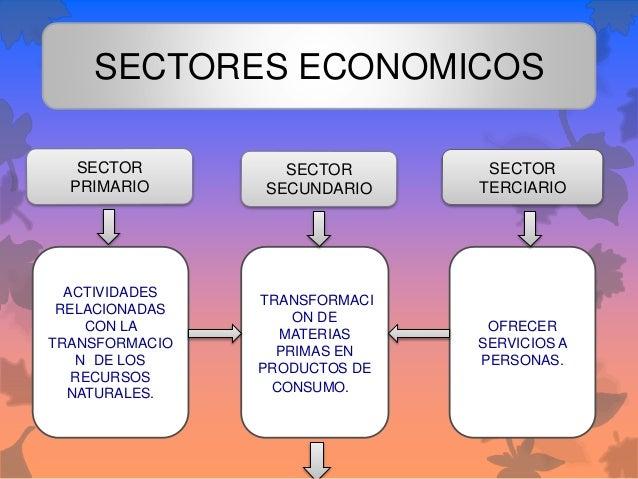 SECTORES ECONOMICOS SECTOR PRIMARIO SECTOR SECUNDARIO SECTOR TERCIARIO ACTIVIDADES RELACIONADAS CON LA TRANSFORMACIO N DE ...