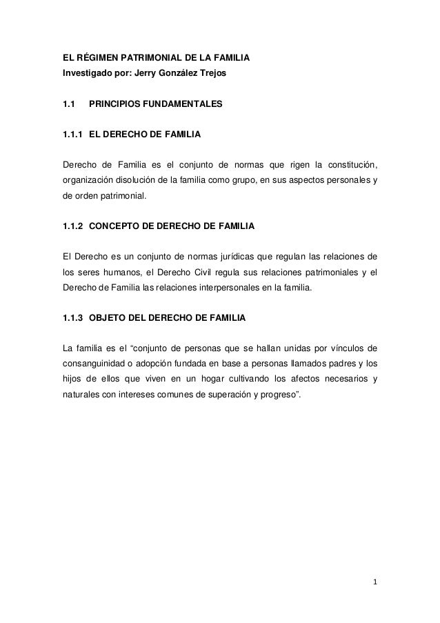 EL RÉGIMEN PATRIMONIAL DE LA FAMILIA
