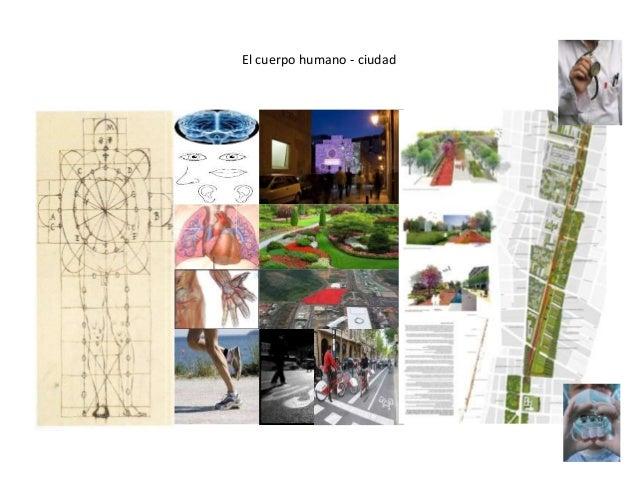 El cuerpo humano - ciudad