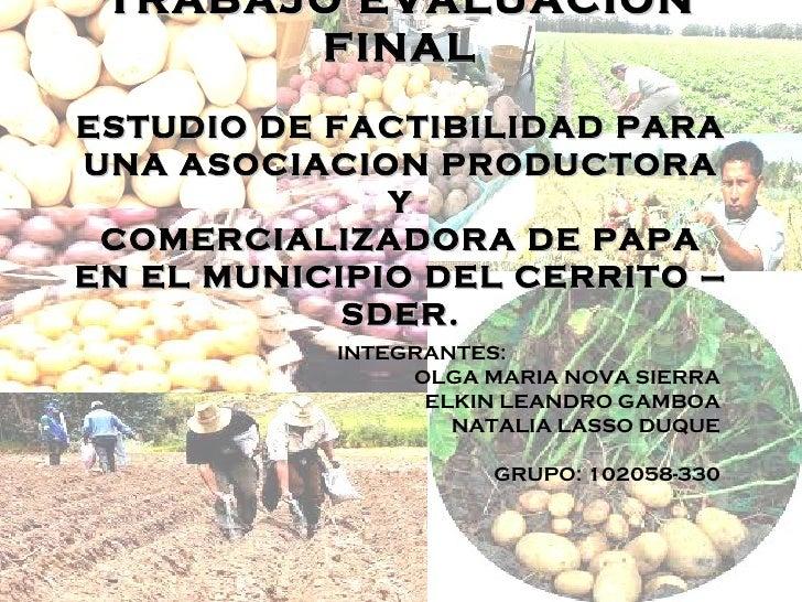 TRABAJO EVALUACION       FINALESTUDIO DE FACTIBILIDAD PARAUNA ASOCIACION PRODUCTORA              Y COMERCIALIZADORA DE PAP...