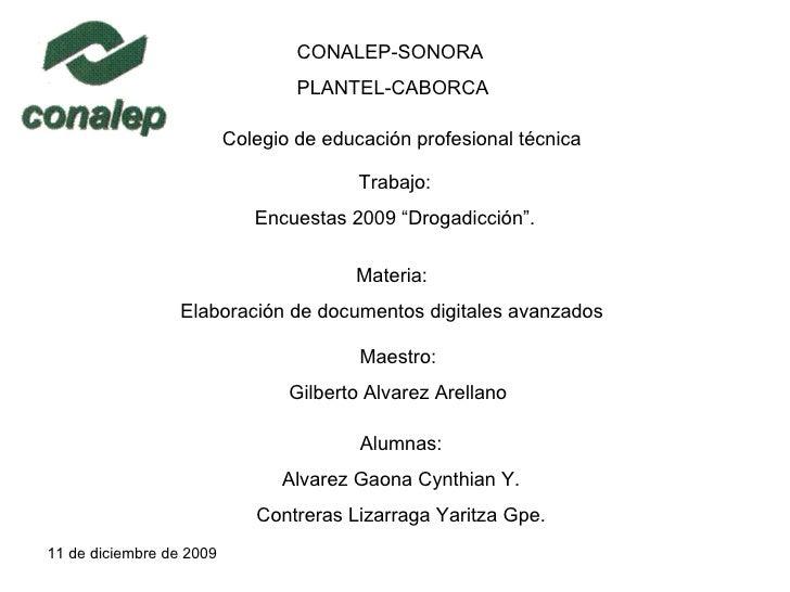 """CONALEP-SONORA PLANTEL-CABORCA Colegio de educación profesional técnica Trabajo: Encuestas 2009 """"Drogadicción"""". Materia: E..."""