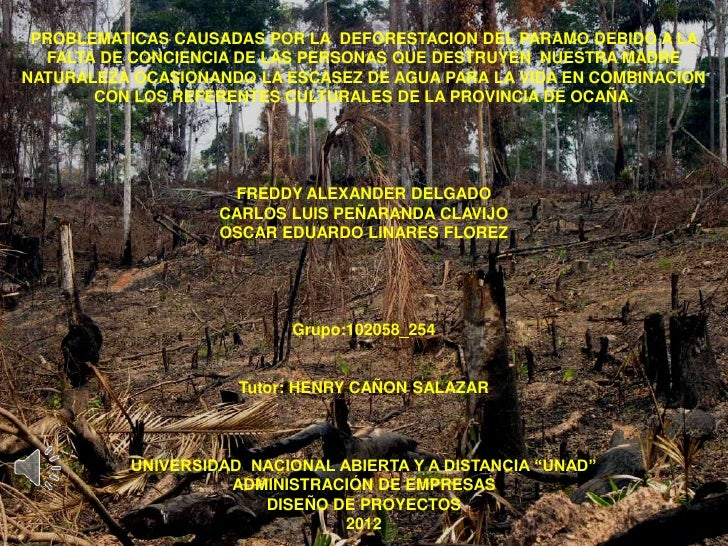 PROBLEMATICAS CAUSADAS POR LA DEFORESTACION DEL PARAMO DEBIDO A LA  FALTA DE CONCIENCIA DE LAS PERSONAS QUE DESTRUYEN NUES...