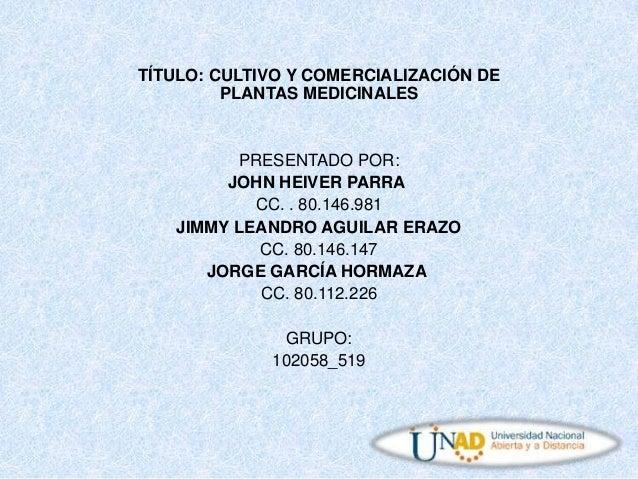 TÍTULO: CULTIVO Y COMERCIALIZACIÓN DE PLANTAS MEDICINALES  PRESENTADO POR: JOHN HEIVER PARRA CC. . 80.146.981 JIMMY LEANDR...