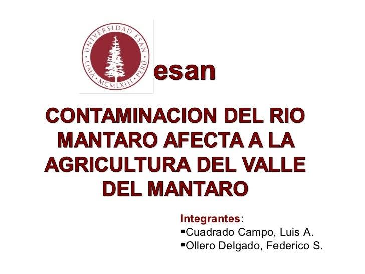 <ul><li>Integrantes : </li></ul><ul><li>Cuadrado Campo, Luis A. </li></ul><ul><li>Ollero Delgado, Federico S. </li></ul>