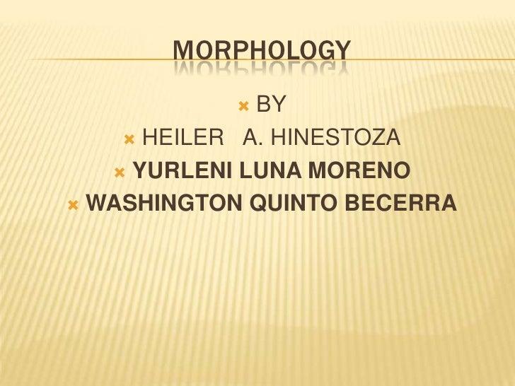 Trabajo Final De Morphosyntax.Ppt