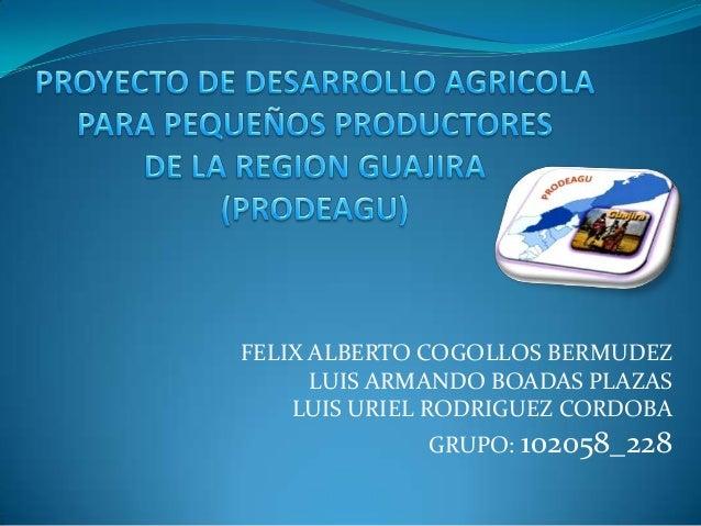 FELIX ALBERTO COGOLLOS BERMUDEZ      LUIS ARMANDO BOADAS PLAZAS    LUIS URIEL RODRIGUEZ CORDOBA             GRUPO: 102058_...