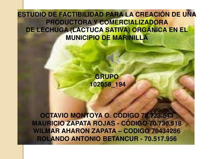 ESTUDIO DE FACTIBILIDAD PARA LA CREACIÓN DE UNA       PRODUCTORA Y COMERCIALIZADORA  DE LECHUGA (LACTUCA SATIVA) ORGÁNICA ...