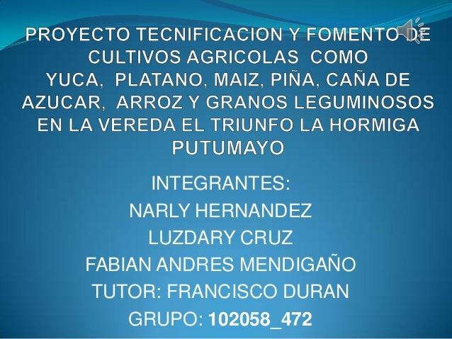 Trabajo final grupo_102058_472-1
