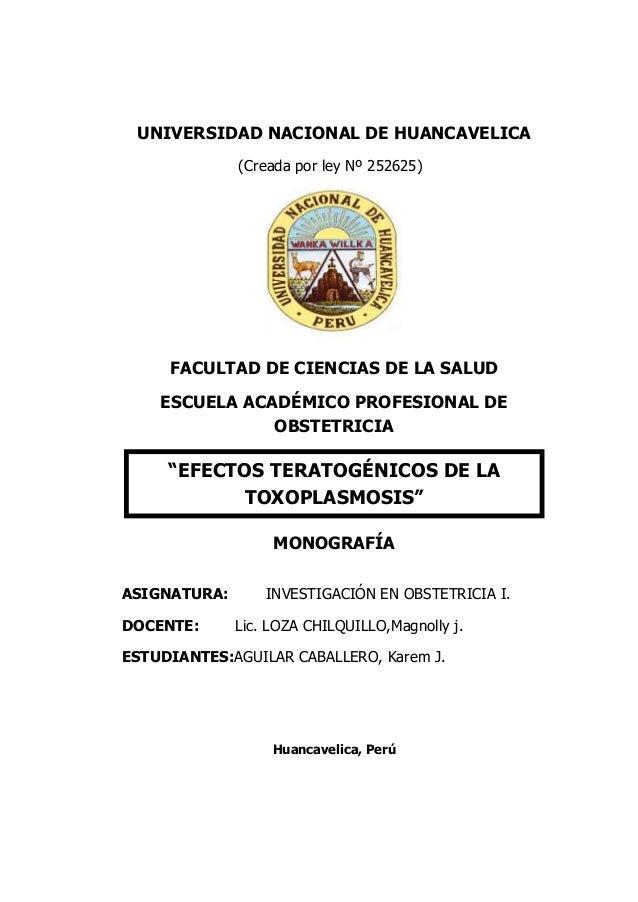 UNIVERSIDAD NACIONAL DE HUANCAVELICA (Creada por ley Nº 252625) FACULTAD DE CIENCIAS DE LA SALUD ESCUELA ACADÉMICO PROFESI...