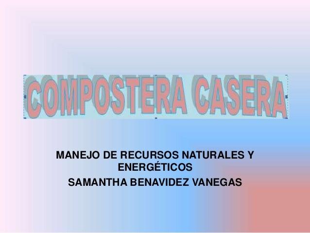 MANEJO DE RECURSOS NATURALES Y  ENERGÉTICOS  SAMANTHA BENAVIDEZ VANEGAS