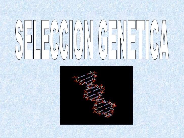 Trabajo Genetica