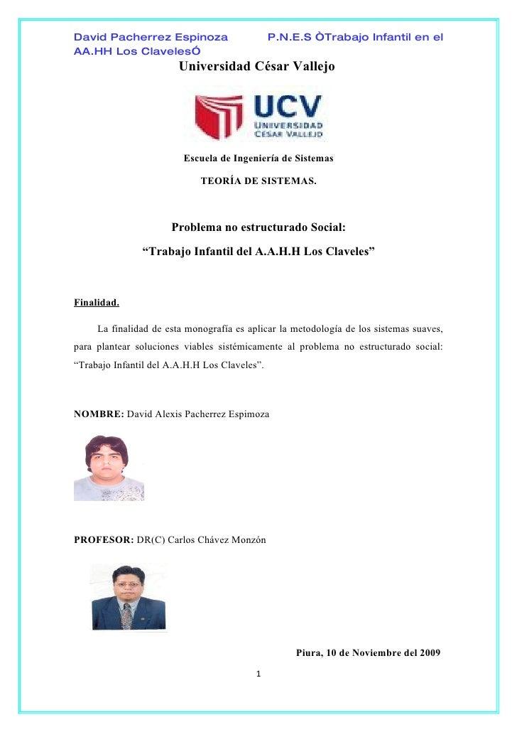 """David Pacherrez Espinoza                       P.N.E.S """"Trabajo Infantil en el AA.HH Los Claveles""""                        ..."""