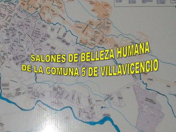 SINTOMAS : Se escogió por medio de una visita que se realizo aalgunos salones de belleza humana de la comuna 5 de Villavi...