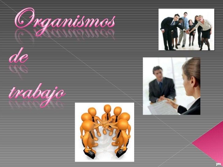 ORGANISMOS DE TRABAJO
