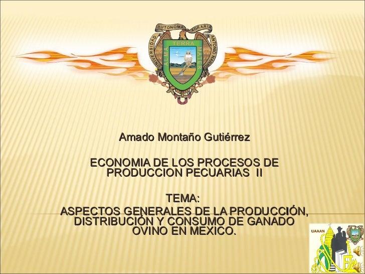 Amado Montaño Gutiérrez ECONOMIA DE LOS PROCESOS DE PRODUCCION PECUARIAS  II TEMA:  ASPECTOS GENERALES DE LA PRODUCCIÓN, D...