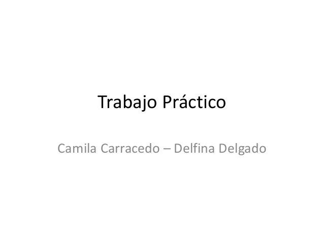 Trabajo Práctico Camila Carracedo – Delfina Delgado
