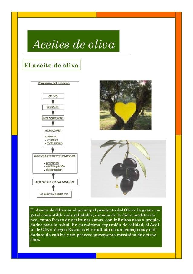 El Aceite de Oliva es el principal producto del Olivo, la grasa ve-getal comestible más saludable, esencia de la dieta med...
