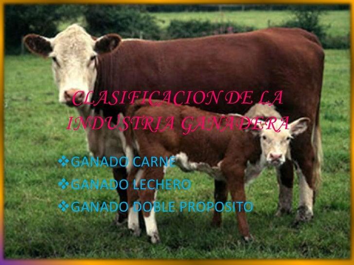 CLASIFICACION DE LAINDUSTRIA GANADERAGANADO CARNEGANADO LECHEROGANADO DOBLE PROPOSITO