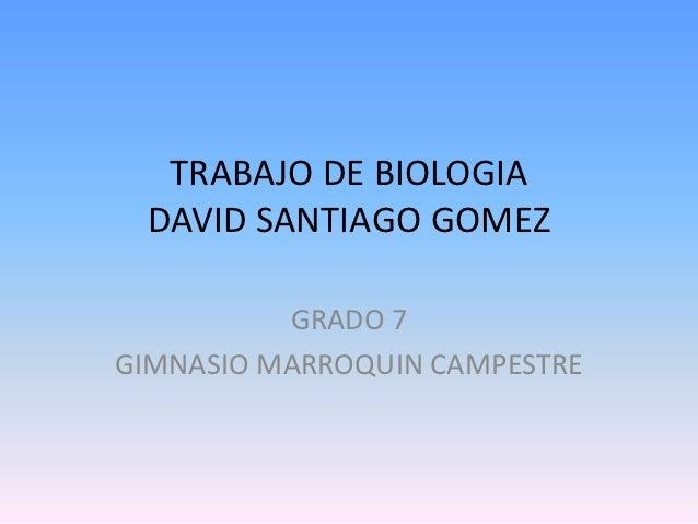 TRABAJO DE BIOLOGIA DAVID SANTIAGO GOMEZ          GRADO 7GIMNASIO MARROQUIN CAMPESTRE