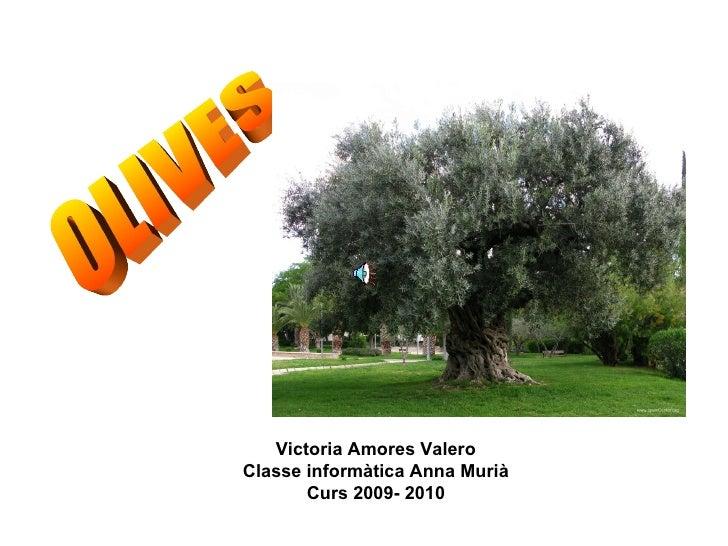 Trabajo sobre les olives