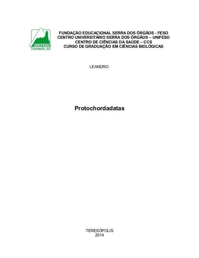 FUNDAÇÃO EDUCACIONAL SERRA DOS ÓRGÃOS - FESO CENTRO UNIVERSITÁRIO SERRA DOS ÓRGÃOS – UNIFESO CENTRO DE CIÊNCIAS DA SAÚDE –...