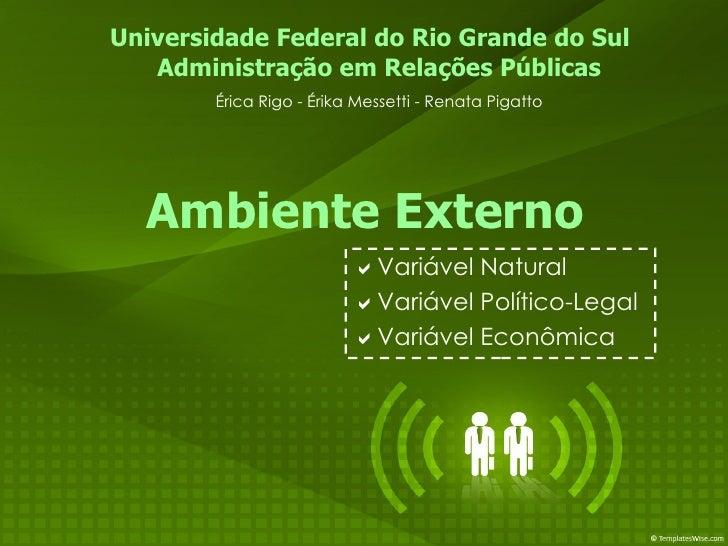  Variável Natural  Variável Político-Legal  Variável Econômica Administração em Relações Públicas Érica Rigo - Érika Me...
