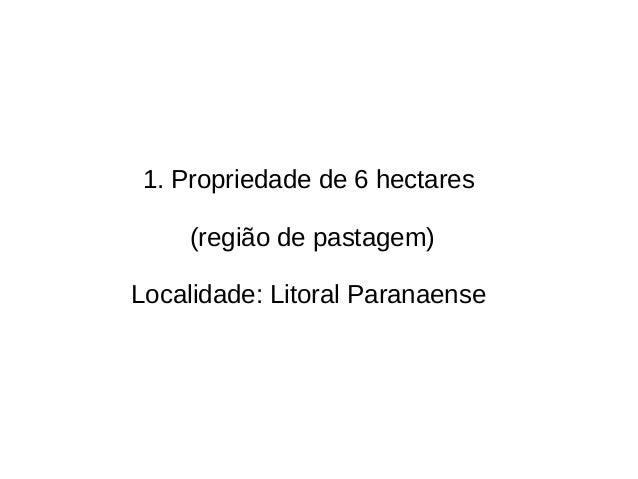 1. Propriedade de 6 hectares (região de pastagem) Localidade: Litoral Paranaense