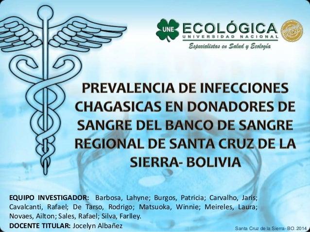 , EQUIPO INVESTIGADOR: Barbosa, Lahyne; Burgos, Patricia; Carvalho, Jaris; Cavalcanti, Rafael; De Tarso, Rodrigo; Matsuoka...