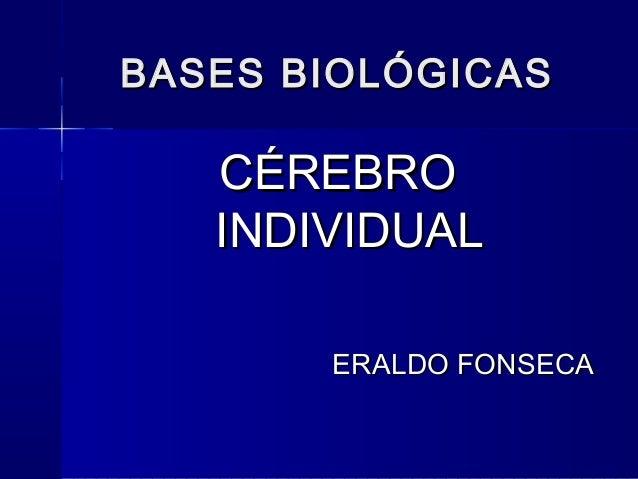 BBAASSEESS BBIIOOLLÓÓGGIICCAASS  CCÉÉRREEBBRROO  IINNDDIIVVIIDDUUAALL  EERRAALLDDOO FFOONNSSEECCAA