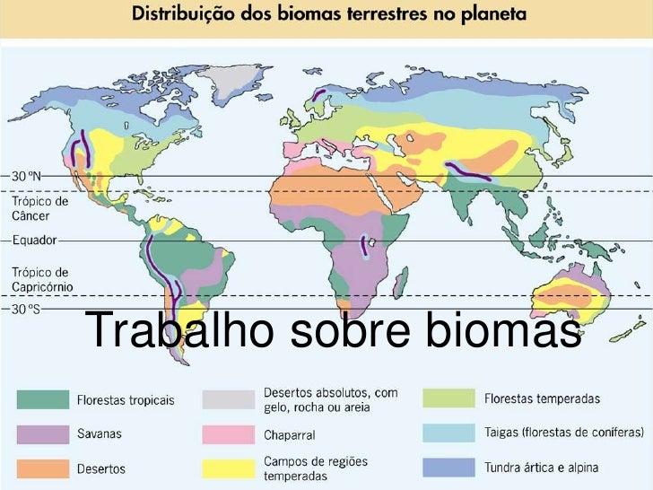 Trabalho sobre biomas<br />